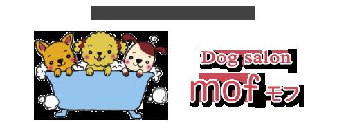 ドッグサロンもふ 箕輪町にある犬の美容室